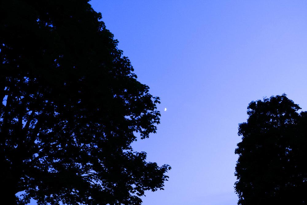 moon&may-4.jpg