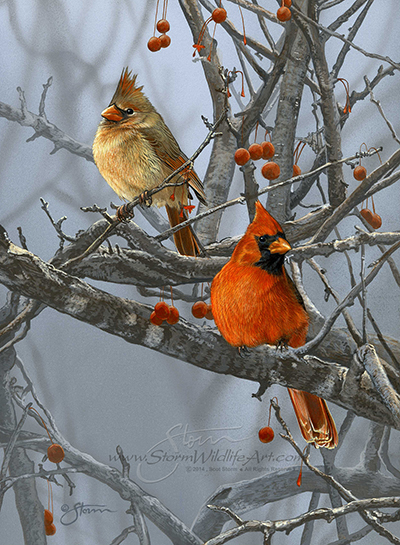 Crabapple Cardinals.jpg