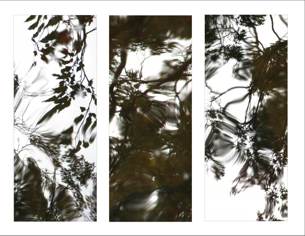 Reflections (triptych)  Untitled  inkjet on aluminum 42 x 16 in. each inches 2011