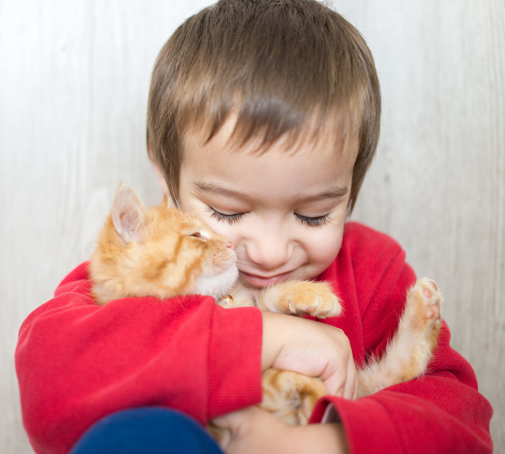portrait-of-child-holding-yellow-kitty-cat_Bt-61OCVs.jpg