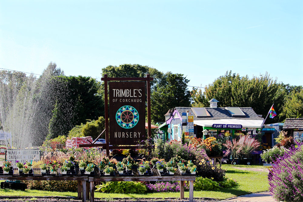 trimbles-nursery-entrance.jpg