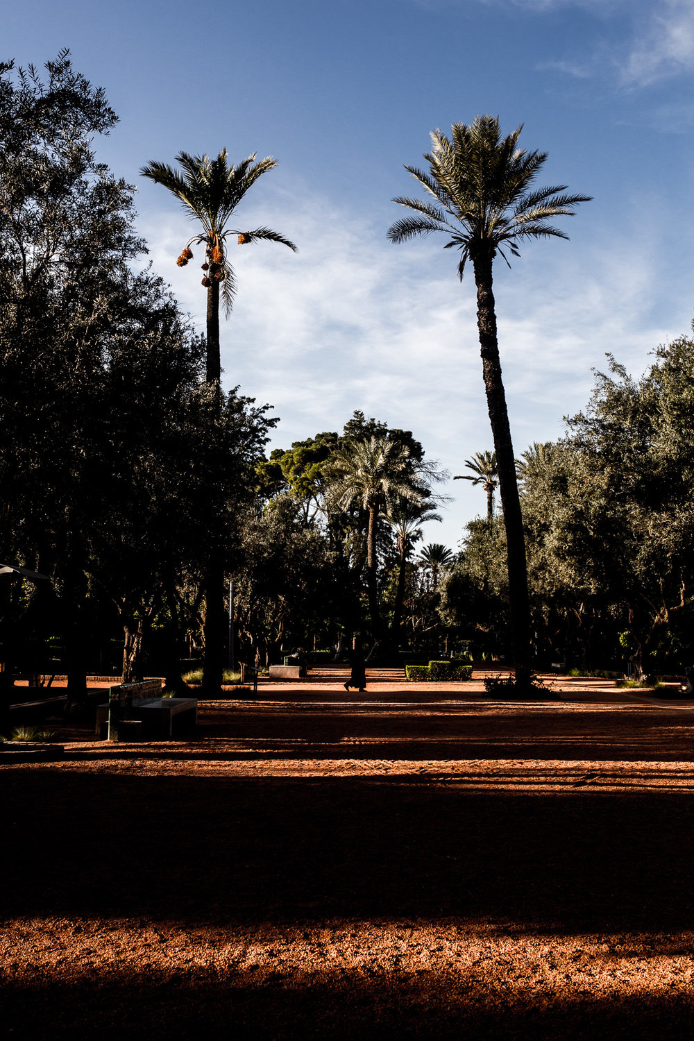 O Saillard Photographe Marrakech 2019-115.jpg