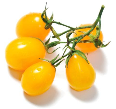 Yellow Pear Tomatoes. $2.50 per 1.5 Pint.