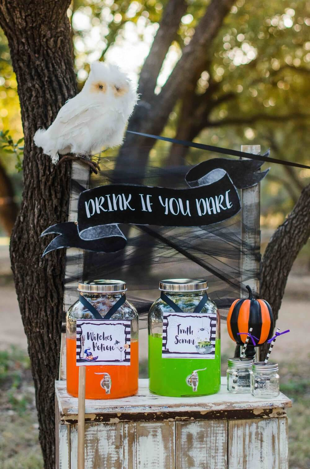 Little Witches Soiree Halloween Party 3