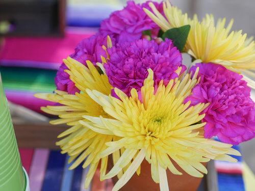 Fuchia, and yellow fresh fiesta flowers.