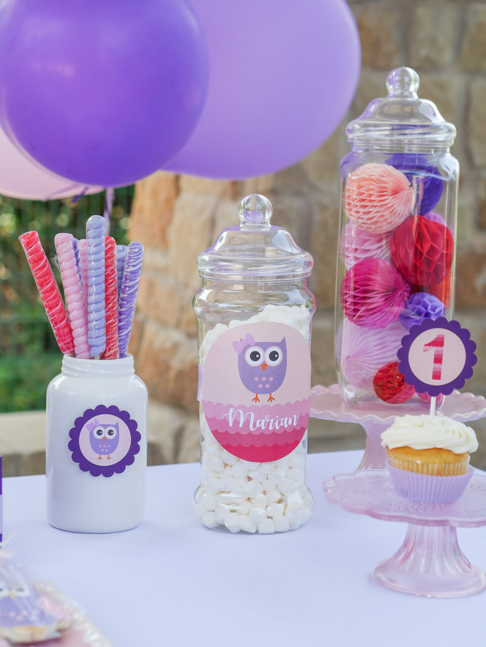 Sweet treats at an Austin, Texas birthday party. Full details on this owl themed first birthday party can be found on www.minteventdesign.com. See over 10 creative party ideas in the Owl First Birthday Party by party stylist Mint Event Design in Austin, TX - including lollipops, marshmallows and gumballs. #birthdayparty #partyideas #partyinspiration #owl #firstbirthday #partytreats #partygoods #partysweets