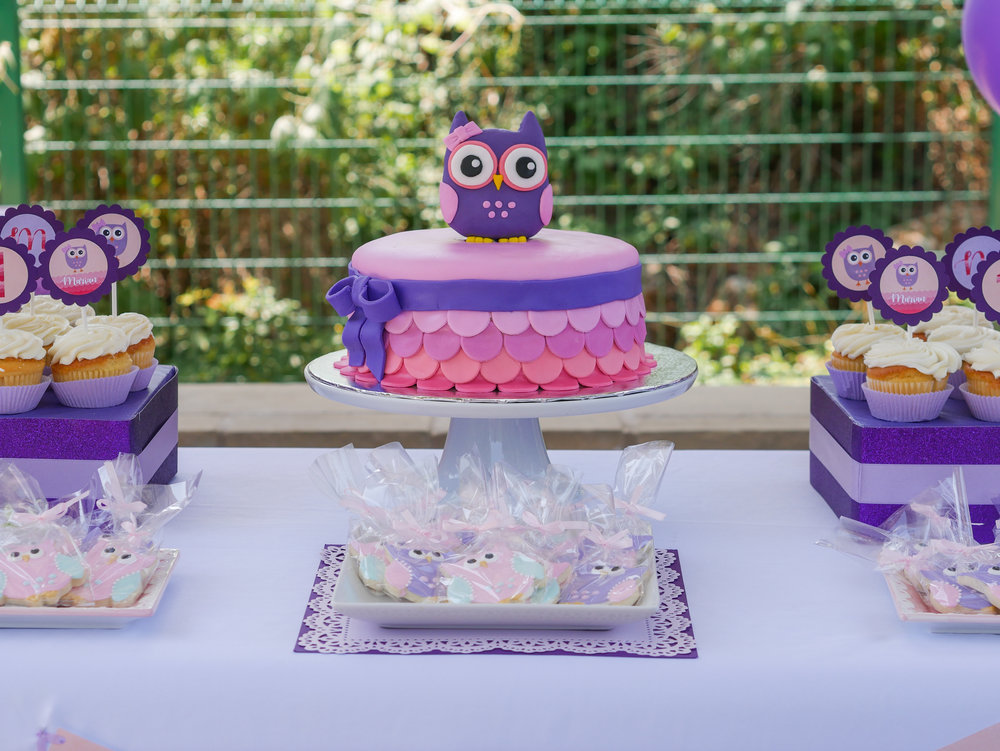 This adorable owl themed party is perfect for a lttle girl's first birthday!