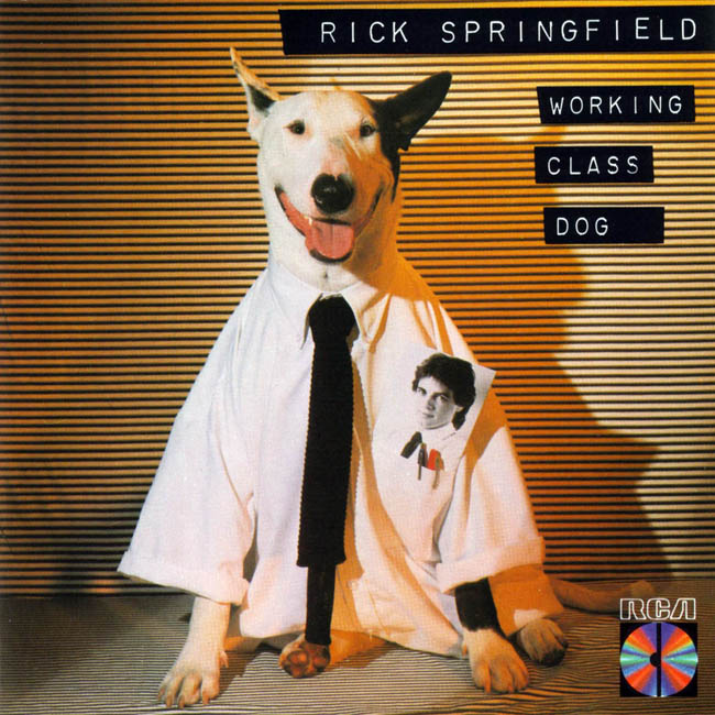 rick_springfield-working_class_dog-frontal1.jpg