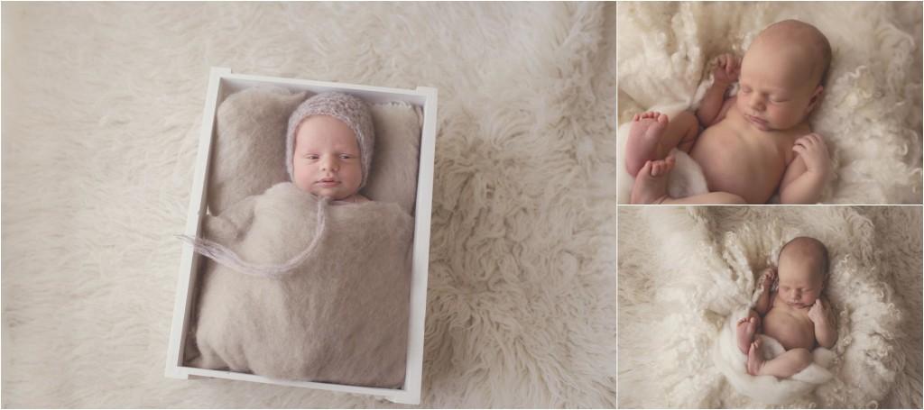 Newborn Photography Ocean Grove_0427