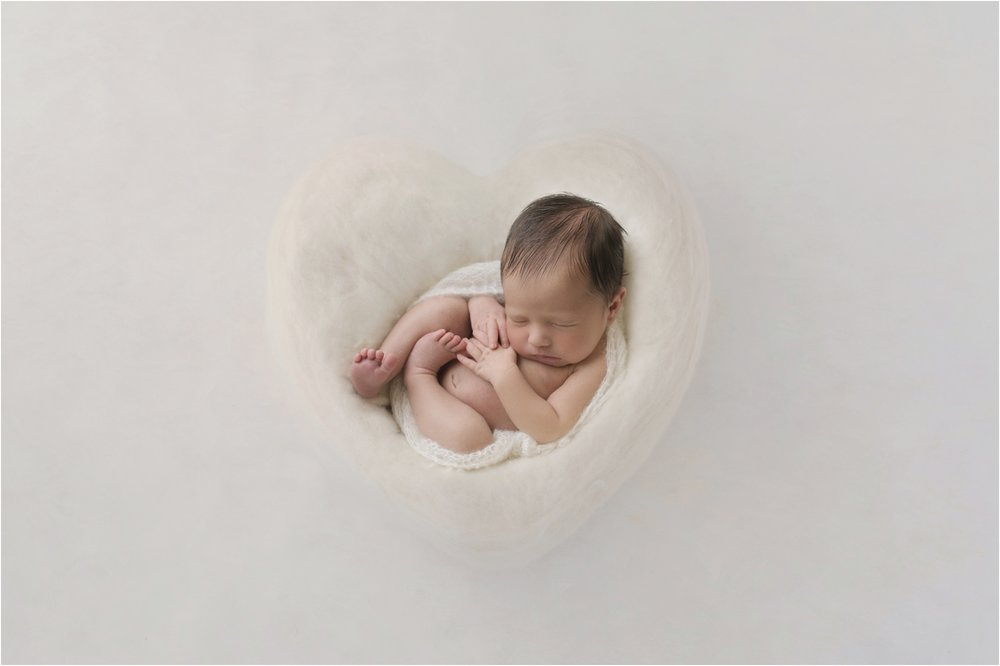 Newborn Photos Geelong_1298.jpg