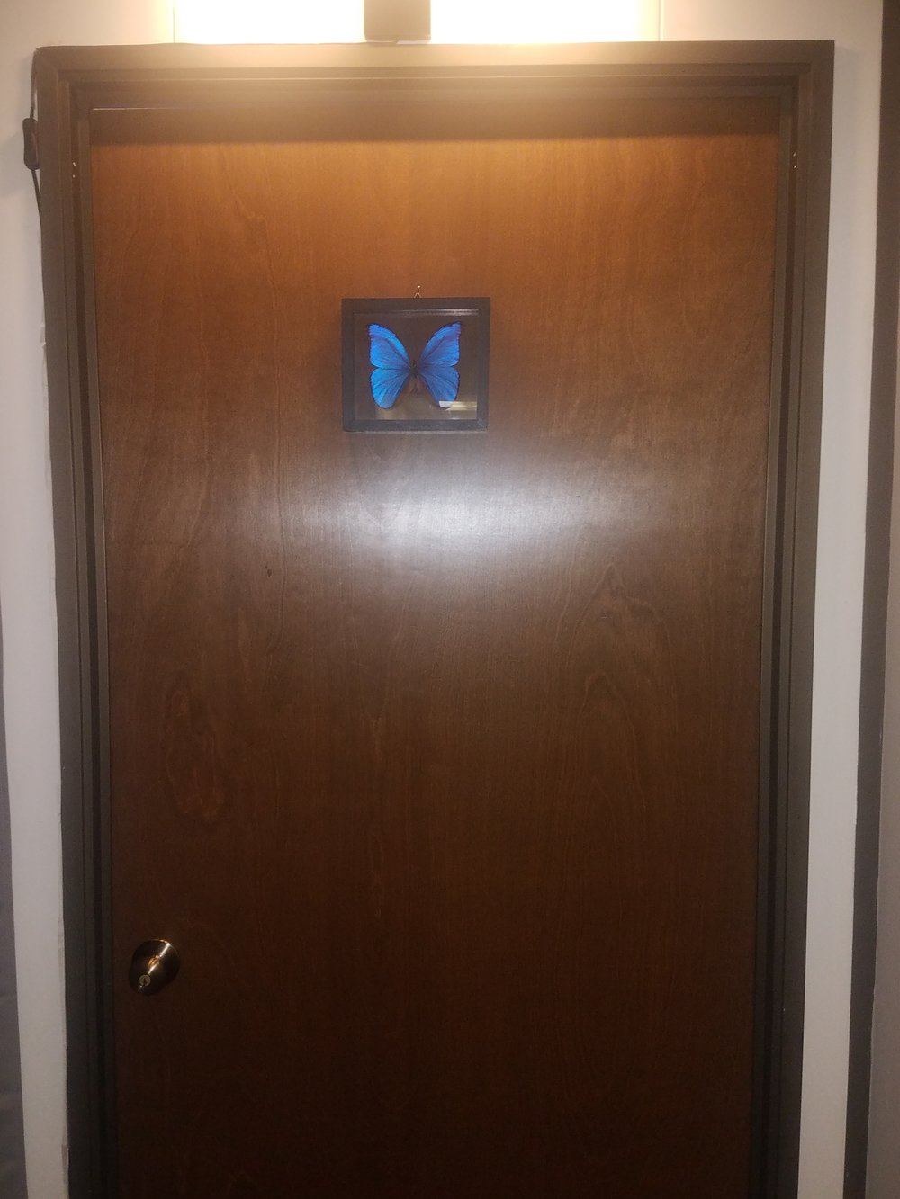 Office Door with Butterfly.jpg