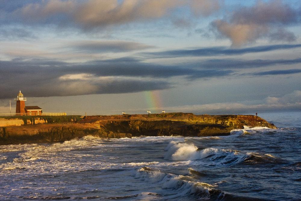Surfers Under the Rainbow