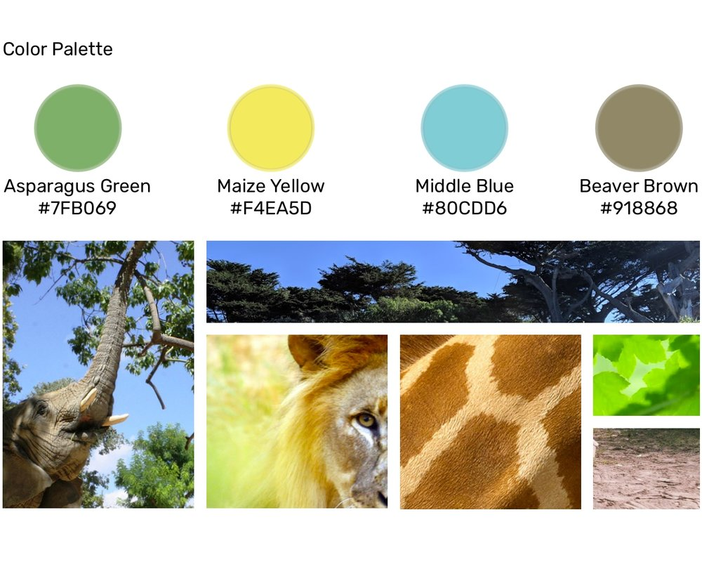 Color Palette & Moodboard.jpg