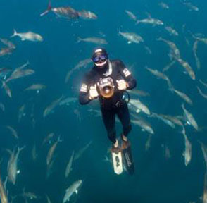 REN CHAPMAN   Instructor Level:  Intermediate Freediver Instructor  Location:  Wilmington, NC, USA