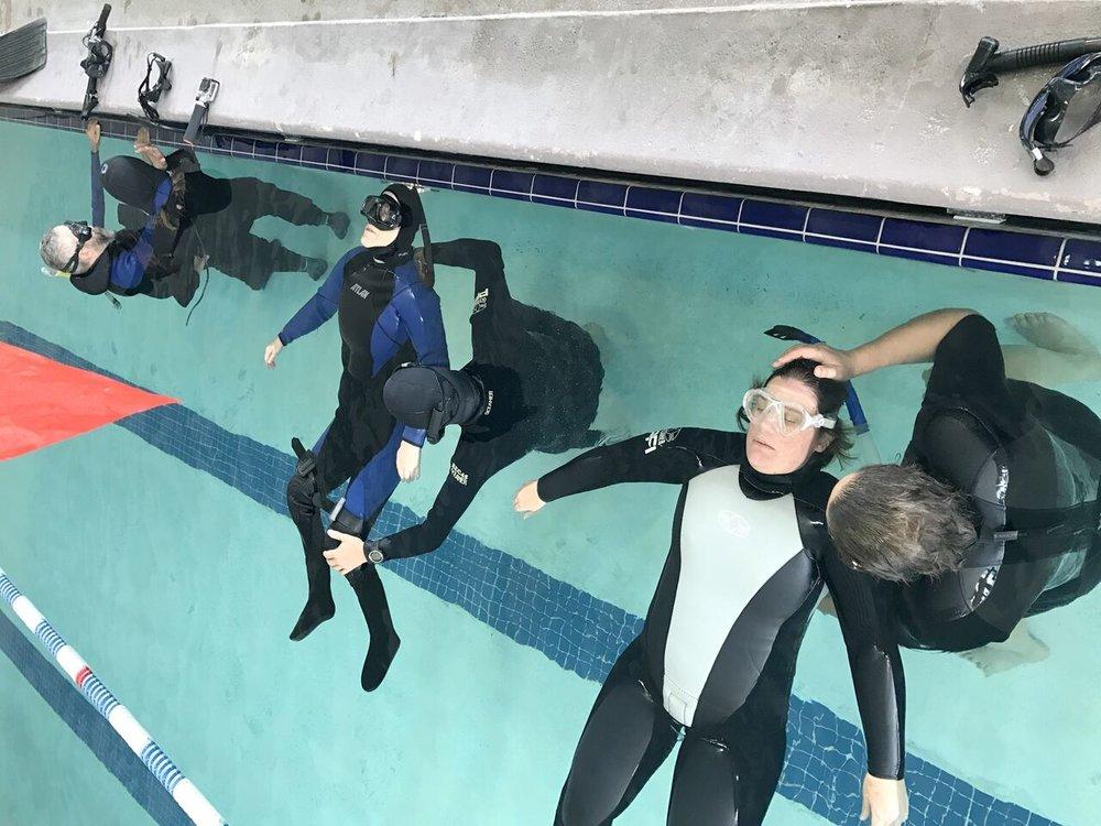 Adaptive Pool_preview.jpeg