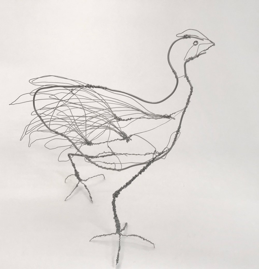 Swamp Hen, galvanised wire.    Currently for sale at the Fleurieu Arthouse, McLaren Value South Australia
