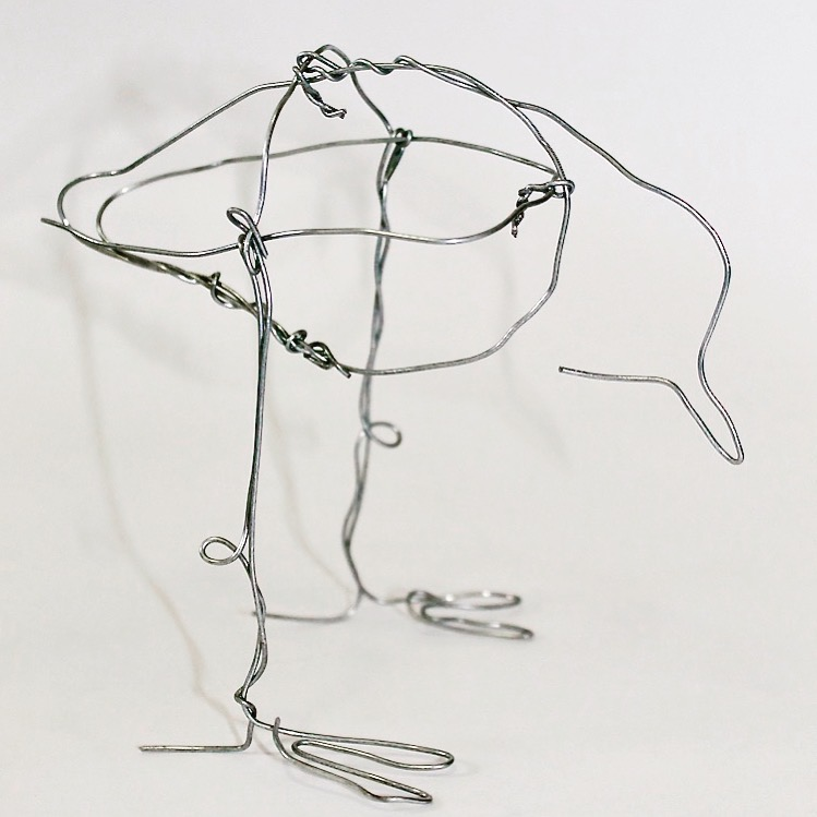 Wire bird series developed for 'Viewpoint', a group exhibition in response to the River Torrens.    Galvanised wire