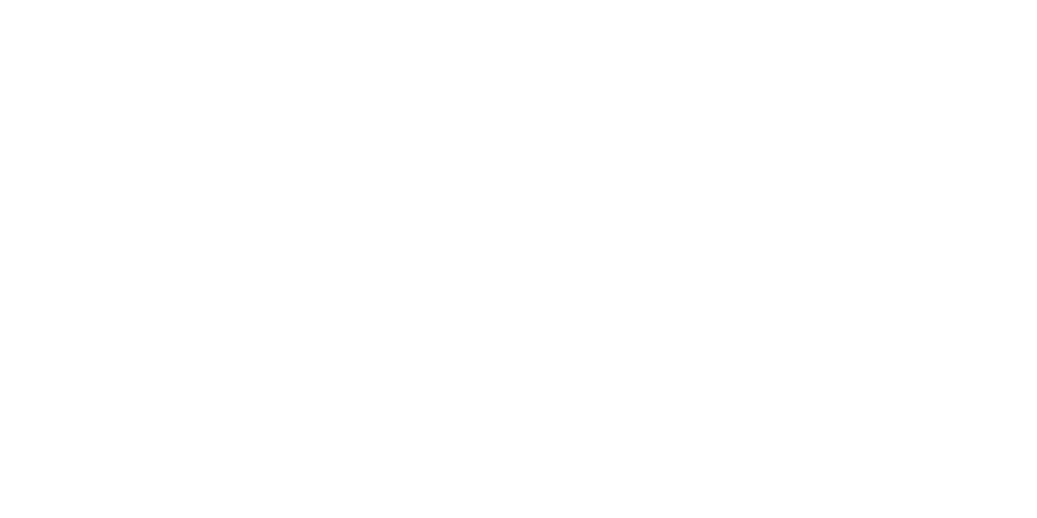 Spark Youth Dance Company