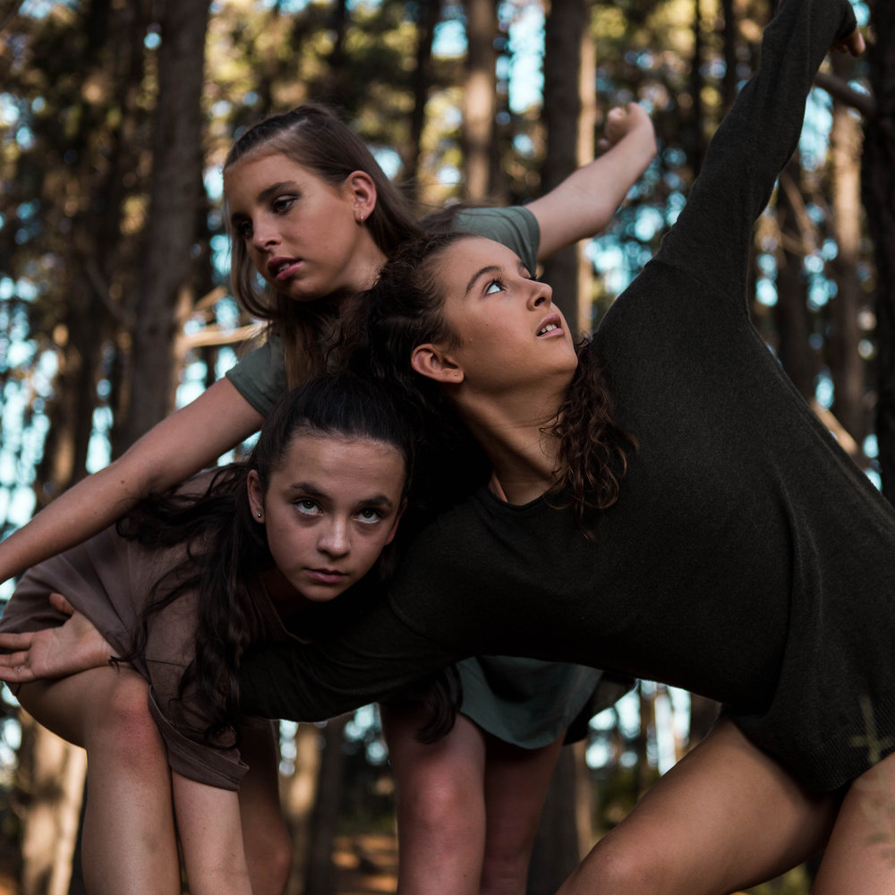 Biophilia - 'Bio' meaning 'life' and 'philia' meaning 'love of'. Biophilia is the idea that humans have an innate, predetermined affinity with nature and other life forms. This dance work draws influence from this hypothesis and uses nature as a stimulus to form abstract patterns and movement phrases.