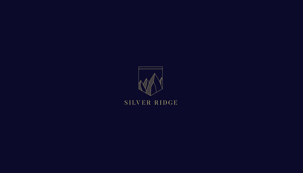 Silver Ridge - Proposal for a residential drug and alcohol rehabilitation program