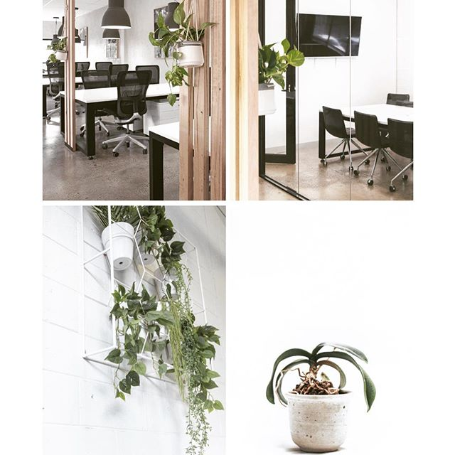 Minimalism magic. The key to productivity. #southhivehub #coworkingmelbourne #southmelbourne #albertpark #productivity