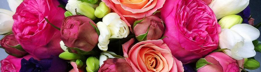 bouquet 1_Wide_thin_900px.jpg