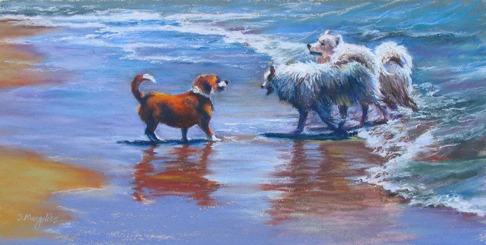 Ocean Dogs