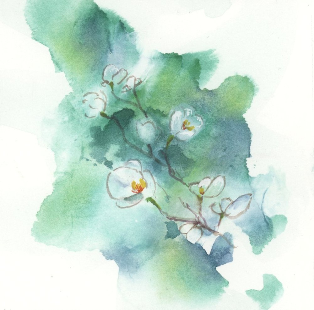 watercolor6.jpg
