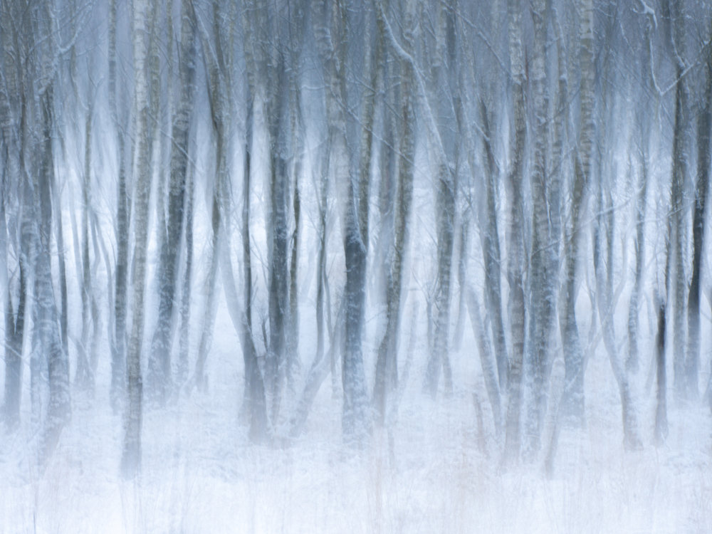 Abstract winterbeeld. iso 100, f22, 2s, 130mm.