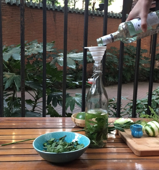 Insert lime zest & mint sprigs into bottle, using the funnel add in the rum & cane sugar. -