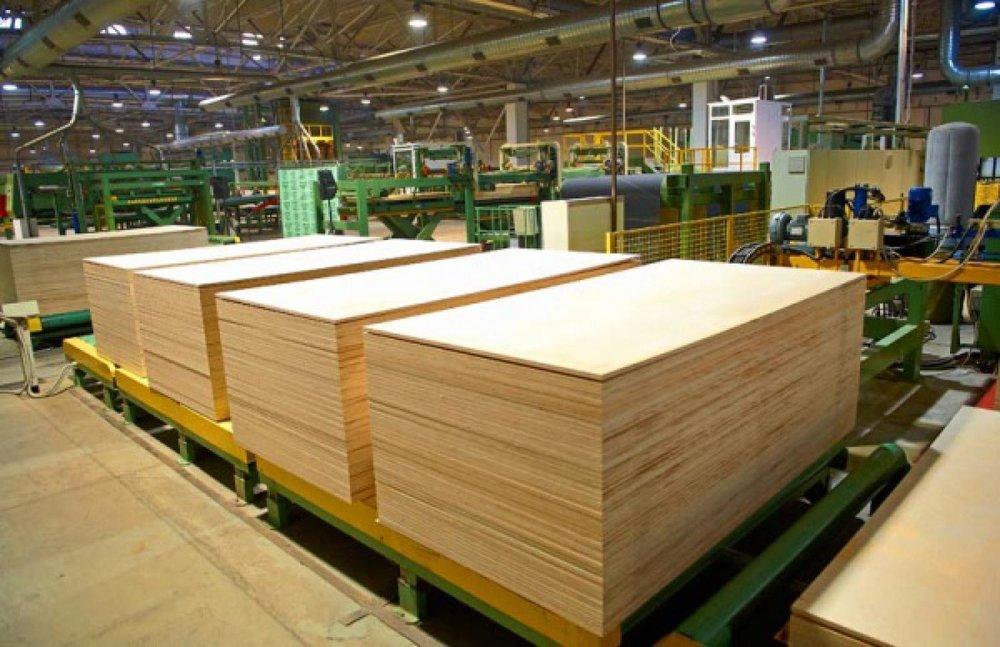 Russian wood industry 79
