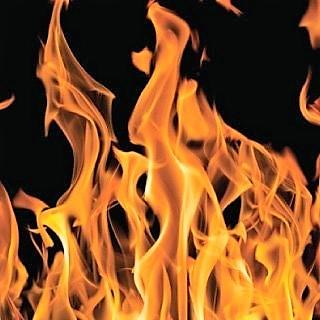Fire-rated plywood plywood_ru.jpg