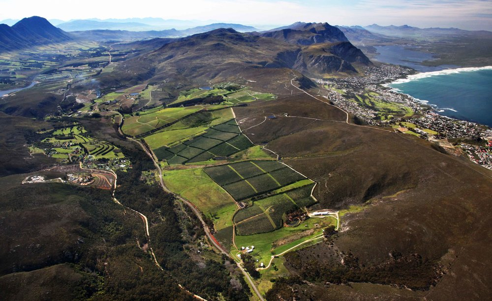 A birds eye view of Hemel-en-Arde, a designation in Hermanus that Tim Hamilton Russell created in the late 1970s.