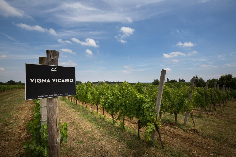The Vicario Vineyard, where Losna is sourced.  Image Source