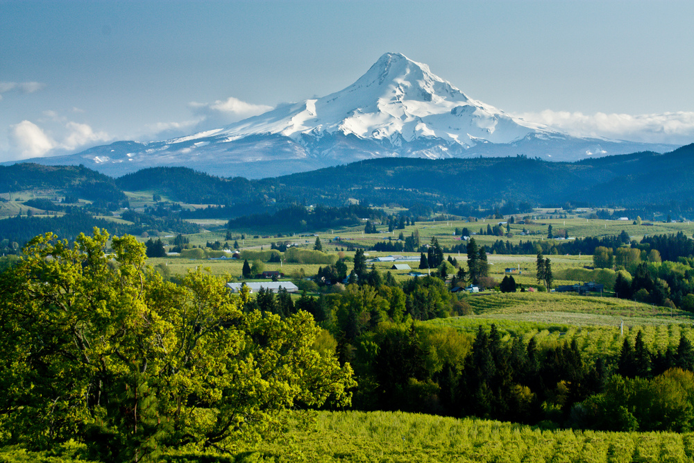 Newberg, Oregon.