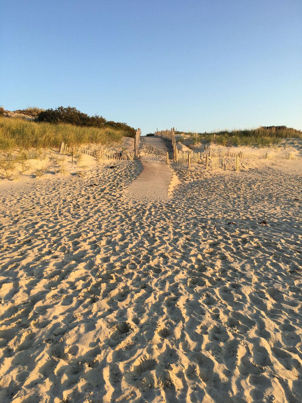 MV-beach9.jpg