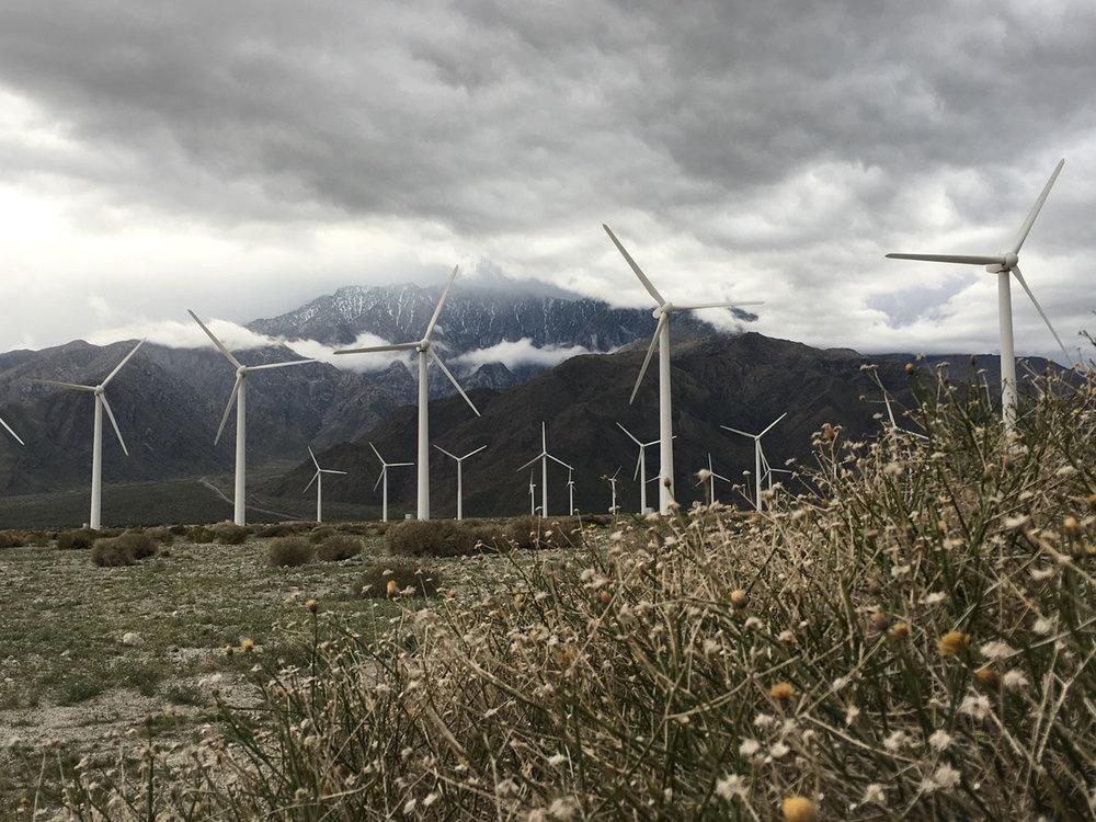 wind-mills2.jpg
