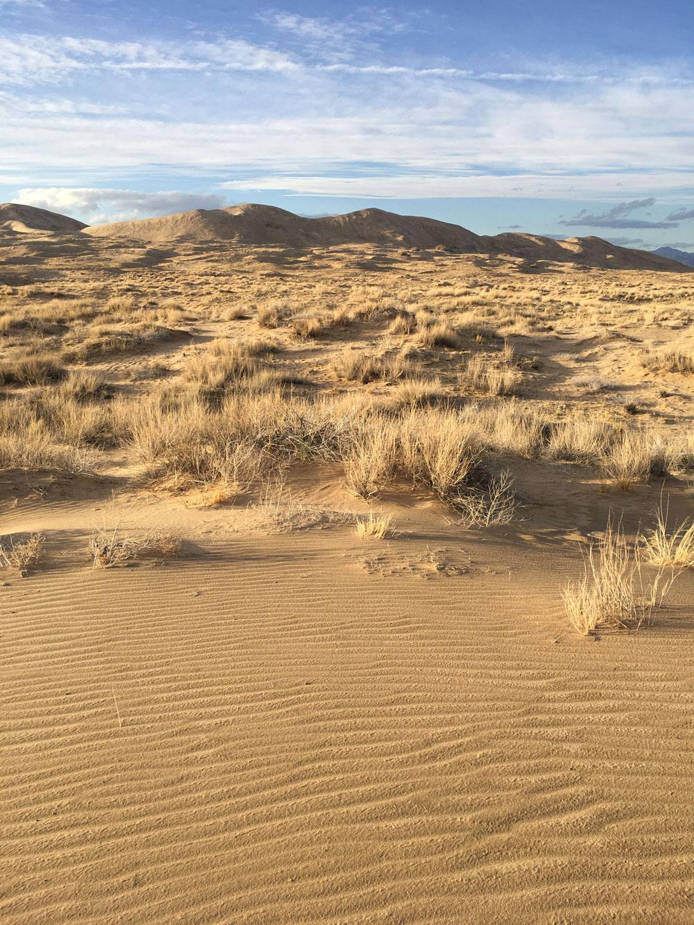 Kelso-dunes1.jpg