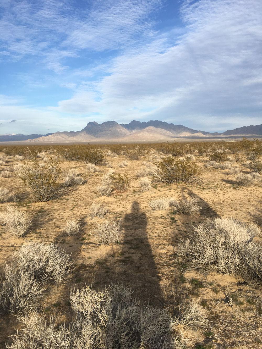 kelso-dunes4.jpg