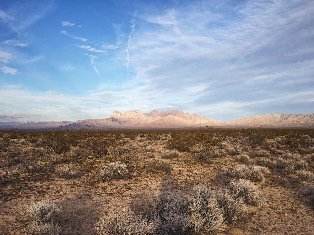 Kelso-dunes6.jpg