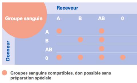 Figure 2: Concernant les groupes sanguins. 4 groupes sanguins sont connus chez l'homme: A, B, AB et 0.Figure 2 montre la compatibilité entre les groupes sanguins. Les donneurs de groupe sanguin 0 sont dits donneurs universels et les receveurs de groupe AB sont dits receveurs universels.