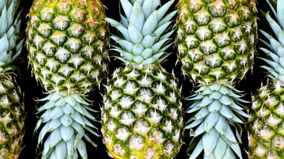 pineapple-anti-inflammatory