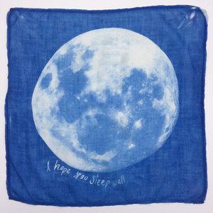 i hope you sleep well pocketable winter 2017 cyanotype on antique fabric