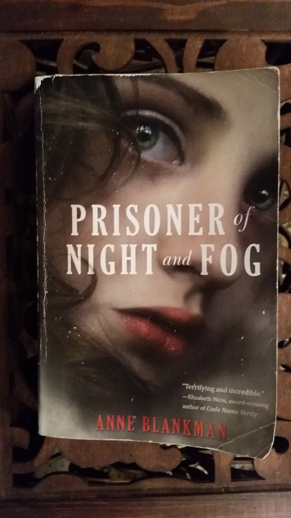 Prisoner of Night and Fog Cover Photo.jpg