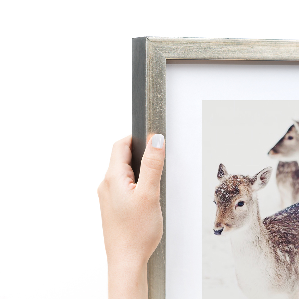 detial of deer in snow with silver frame -Kate Uhry photo