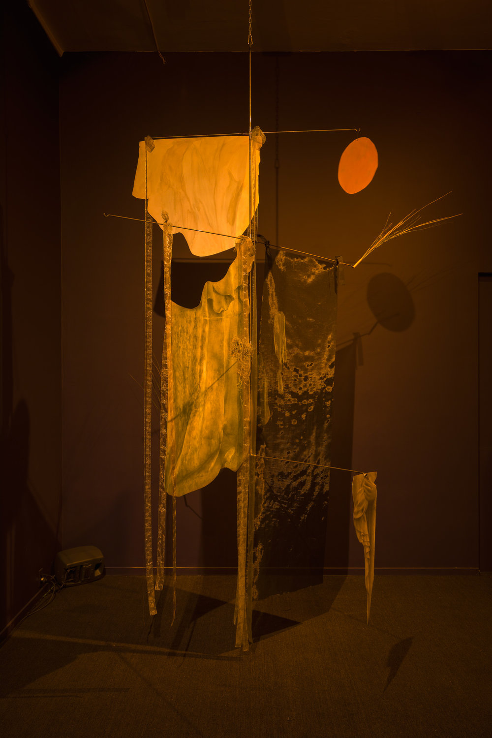 Veils of a Bog, 2018. Vanessa Brown + Michelle Helene Mackenzie at The Western Front.   LINK HERE:   https://peripheralreview.com/2018/12/13/speculative-methodologies-veils-of-a-bog-at-the-western-front/  Photo credit: Dennis Ha