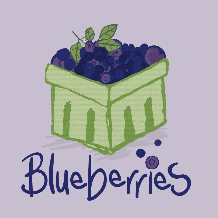 blueberries_branch_text_wip.jpg