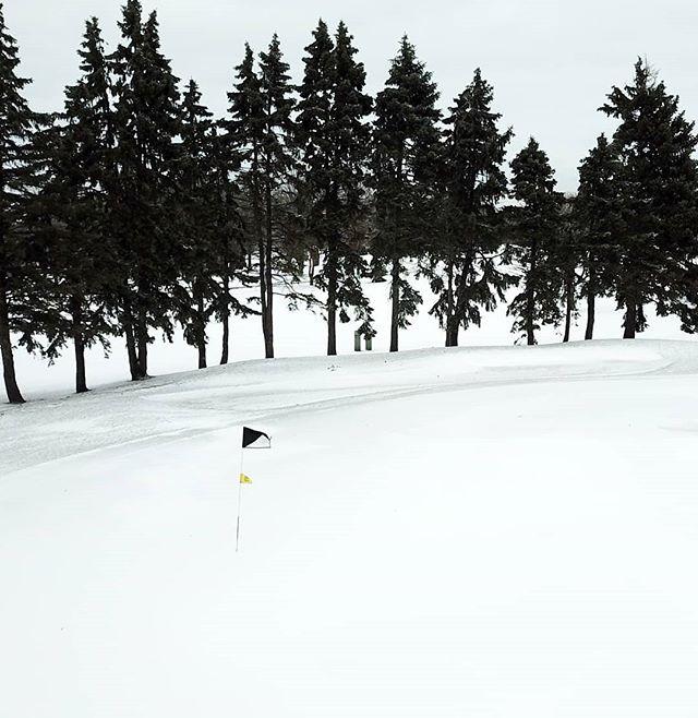Spot the golf ball. 🤣