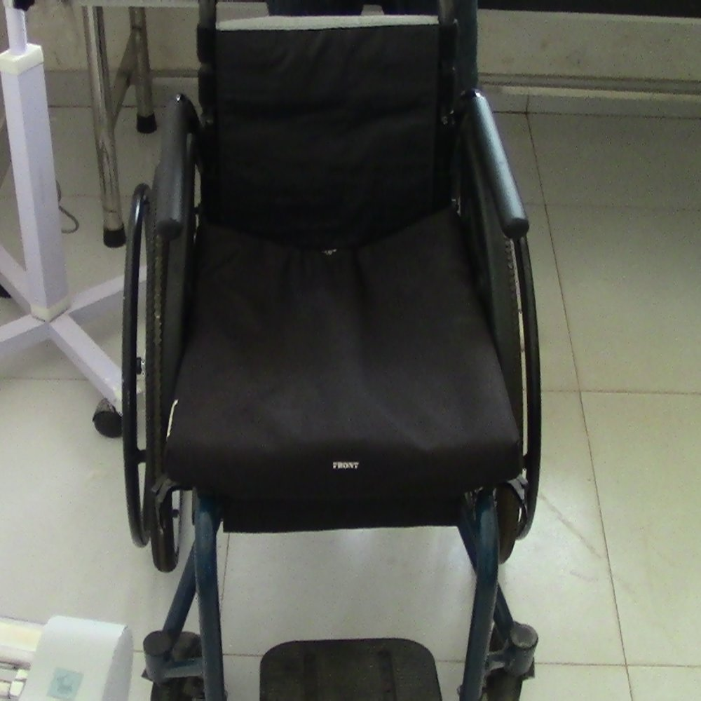 Pacy's new wheel chair.JPG