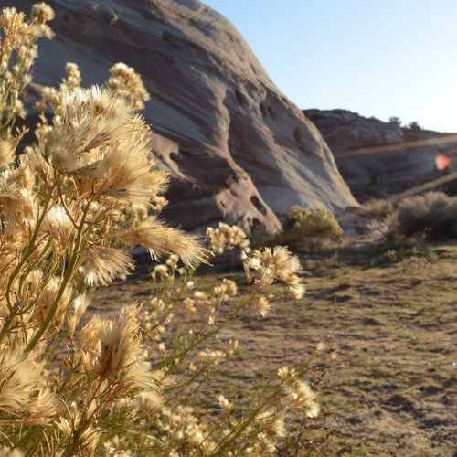 antelope-whitehouse-campground.jpeg